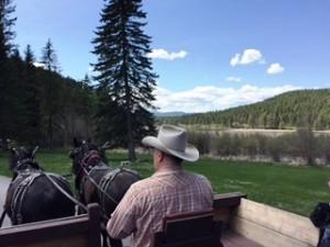 (Horse-drawn wagon ride at Bar W Guest Ranch)