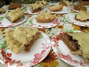 McIntosh Apples make the best pies.