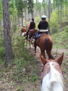 A horseback trail ride is one of many activity options in Western Montana.