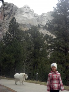 Great faces + mountain goats = a match made in South Dakota.