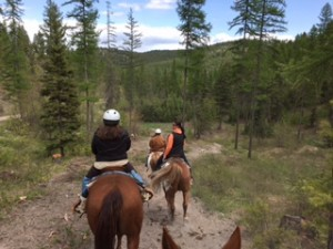 Trail ride in the Salish Mountains outside of Kalispell.