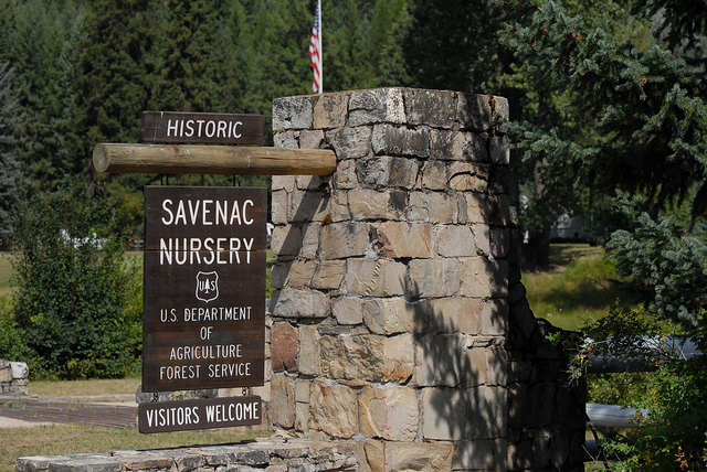 The entrance to the historic Savenac Nursery in Haugan, Montana. Photo: U.S. Forest Service Northern Region