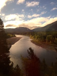 View of the Flathead River from the train.
